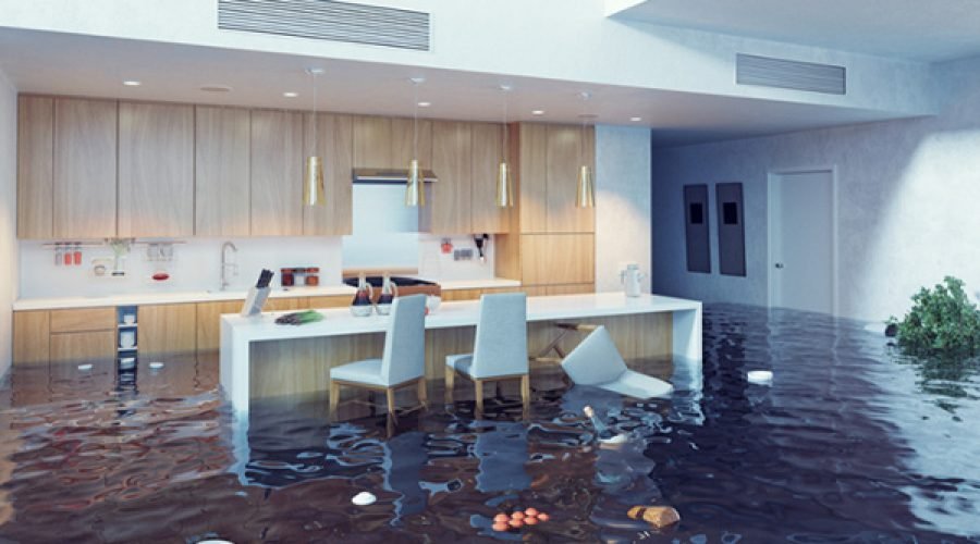water damage restoration advice from local experts